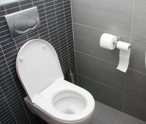 Como escolher vaso sanitário faz diferença para a decoração do seu banheiro