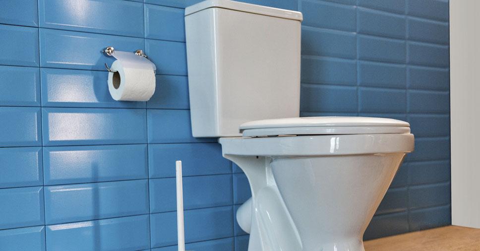 Conheça os modelos e saiba como escolher vaso sanitário