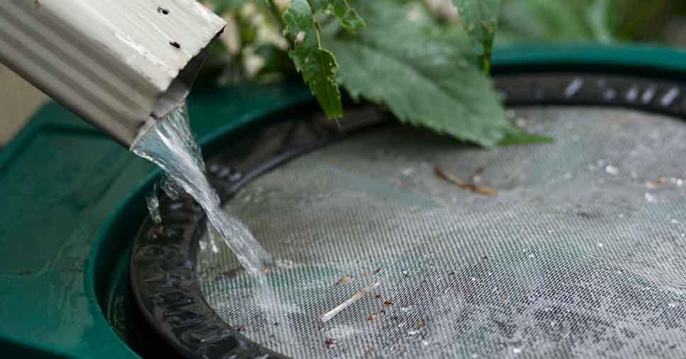 Captação de água da chuva: vantagens de fazer em casa