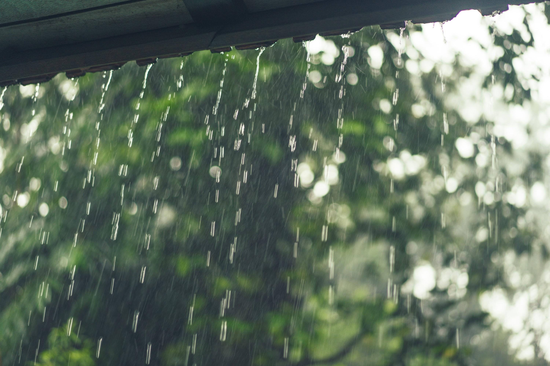 Como fazer a coleta de água da chuva e economizar na conta